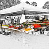 Saturday Morning at Flagler Beach's Farmer's Market. Flagler Beach, FL
