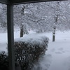Looking out the front door.  I scooped the walk a couple hours ago.