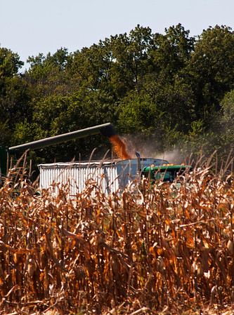 Marion County Harvest - 2010