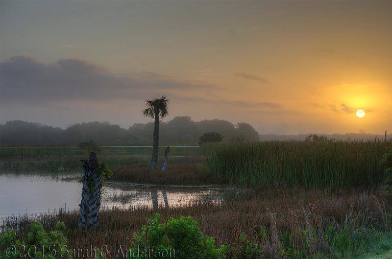 Sunrise, Viera Wetlands