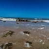 Storm Debris on the beach