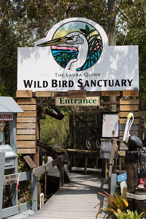 Florida Keys Wild Bird Sanctuary