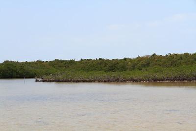 2010 05 05 Florida Keys 044