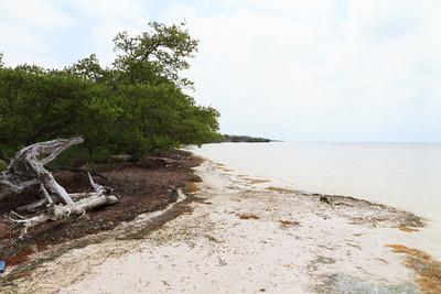 2010 05 05 Florida Keys 027