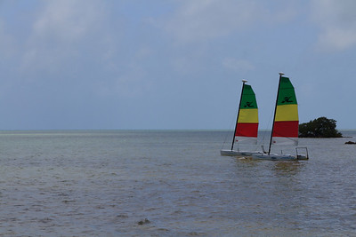 2010 05 03 Islamorada FL 016