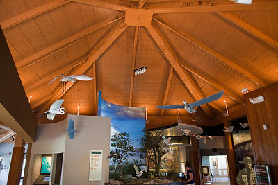 Ernest Coe Visitor Center