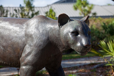 Ernest Coe Visitor Center - Florida Panther