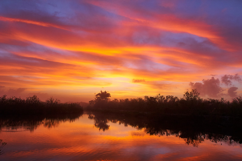 Everglades Marsh Sunrise
