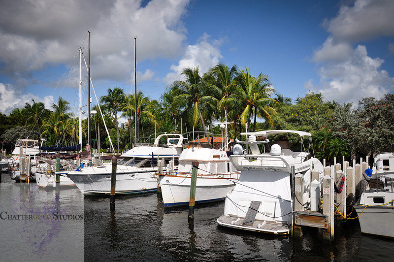 Yachts on the Fort Lauderdale Intracoastal Waterway .  This Image is © Tricia Chatterton Goldrick/Chattergold Studios.  All Rights Reserved.  No duplication without permission (see commercial downloads).  This image may be downloaded from this website for blogging purposes only.