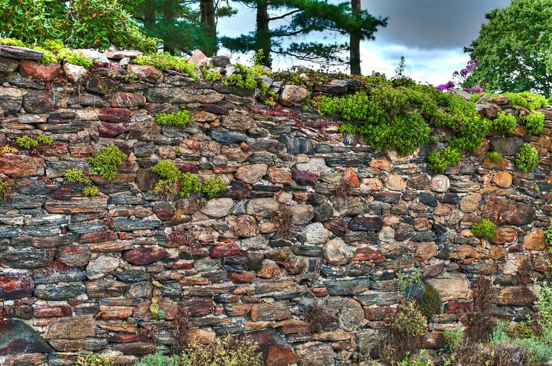 Garden Stonewall (Former cellar hole).