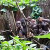 Crianças a espreitar para um viveiro. Tabanca de Caur de Cima, sector de Empada - região de Quinara.