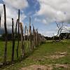 Cerca da horta comunitária da tabanca de Sintcha Tchali - tabanca do sector de Pirada, região de Gabú.