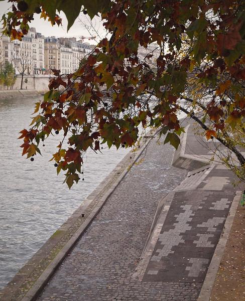 The Seine in Paris - 17 Nov 2011