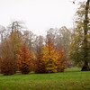 The Farm - 16 Nov 2011