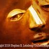 Ebony Man - Copyright 2014 Steve Leimberg - UnSeenImages Com _DSC4234