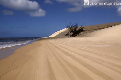 IMG_0224_Fraser Island QLD