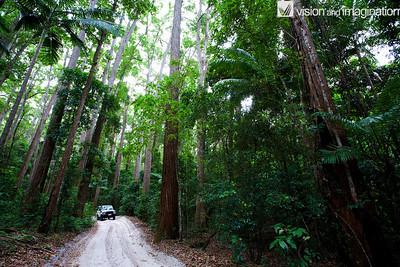 IMG_0778_Fraser Island