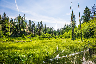 French Cabin Creek