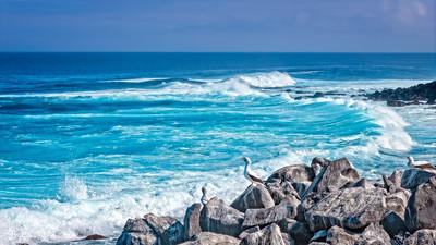 Espanola Coast