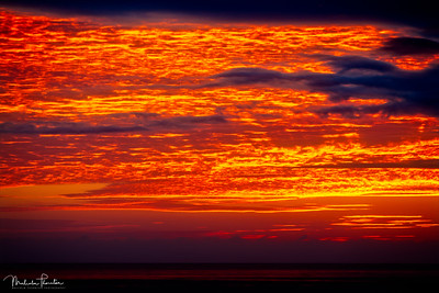 Pacific Fiery Sky