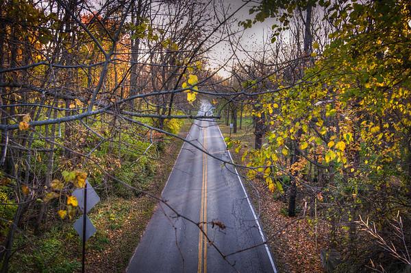 Fall Morning-111013-024