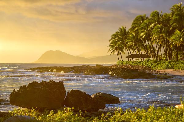 Hawaii-063019-1993clone