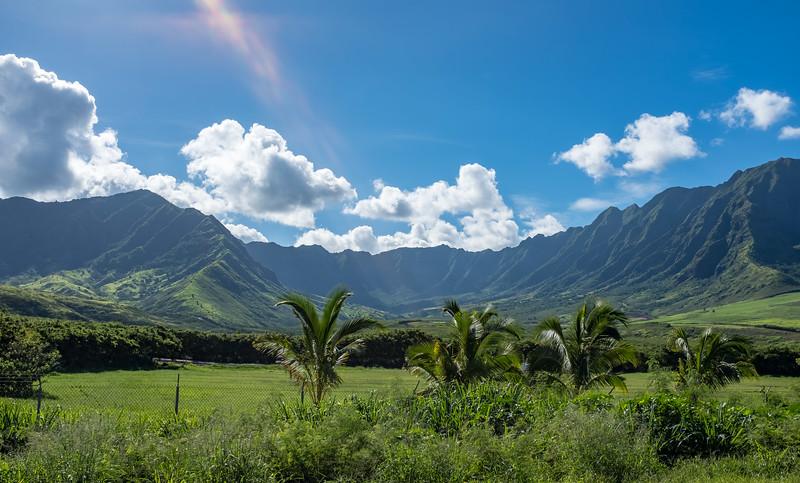 Hawaii-070519-356