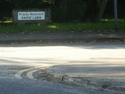 Snipe lawn