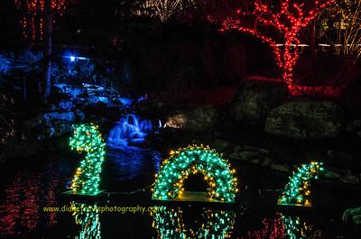 Garden Festival of Lights ~ Lewis Ginter Botanical Garden ~ Dec ...