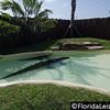 Gator Spot at Fun Spot America - Orlando, International Drive, Orlando, Florida - 11th May 2015 (Photographer: Nigel G Worrall)