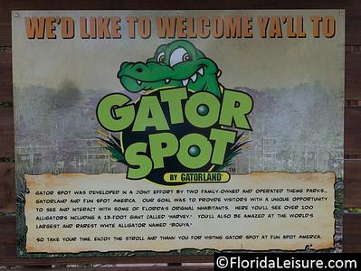 Gator Spot at Fun Spot America