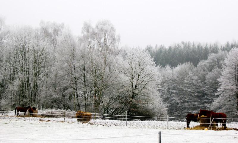 White Christmas, Horressen.