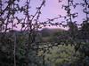 Sunset<br /> 5th September 2014