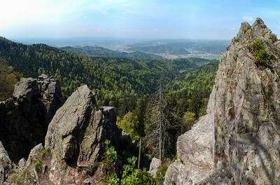 Schwarzwald / Black Forest