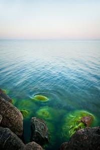 Grönt hav