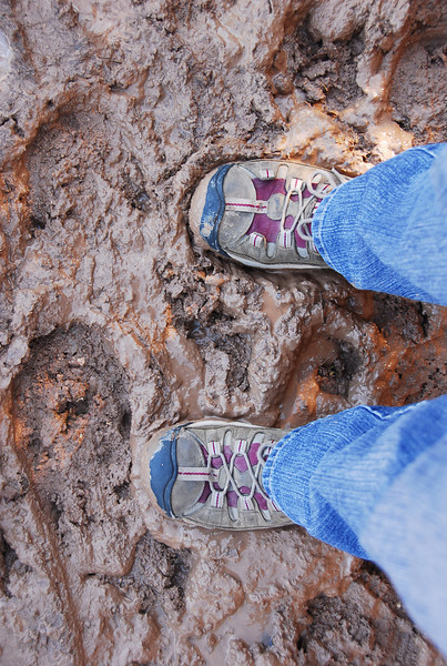 Bright Angel Trail...a tad muddy.