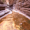 Makatamiba Gold<br /> Matkatamiba Canyon, River Mile 148, Colorado River, Grand Canyon National Park<br /> 2009