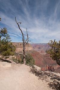 Grand Canyon-04914