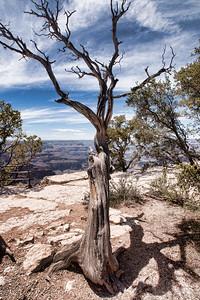 Grand Canyon and Las Vegas-05035
