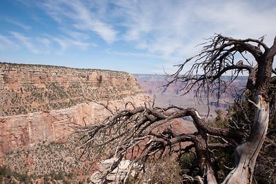 Grand Canyon-04923