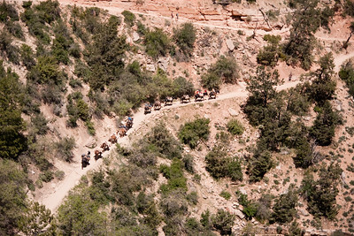 Grand Canyon-04939