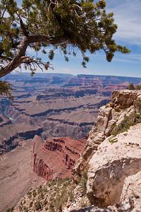 Grand Canyon-04991