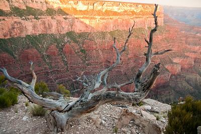 Grand Canyon Sunrise-04805