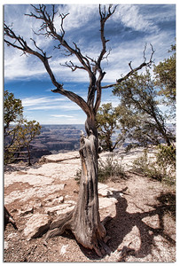 Grand Canyon and Las Vegas-05035-Edit
