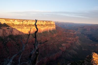 Grand Canyon-04810