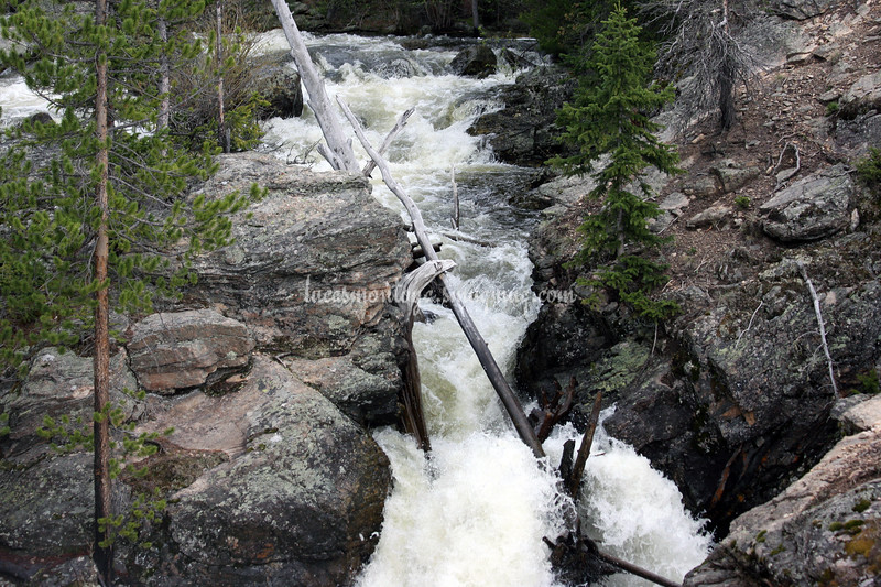 Adams Falls near Grand Lake, Colorado;  Hiking the E. Inlet Trail - June 2011