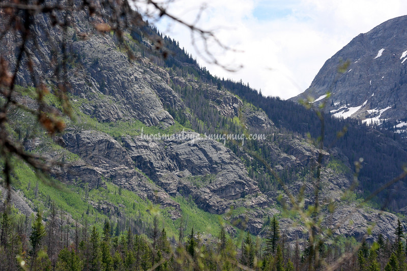 Grand Lake, Colorado;  Hiking the E. Inlet Trail - June 2011