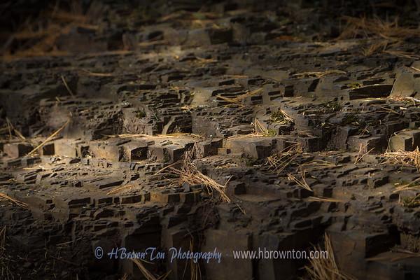 Basalt steps in the woods...