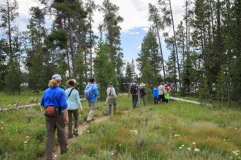 The group makes its way to the edge of Leigh Lake.