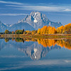 Oxbow Bend reflections of Autumn